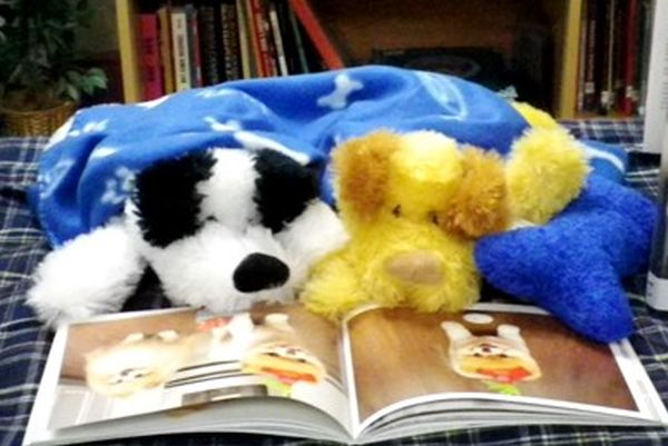 A study found that stuffed animal sleepover programs at libraries do really encourage kids to read books their stuffed animals chose from them during the sleepovers. (wikimedia)