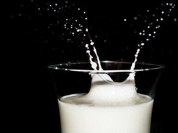Calcium can prevent osteoporosis but studies have also shown that it also helps to improve weight loss.