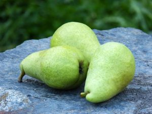 "Pears made it into the 2017 dubious list of ""Dirty Dozen"" produce that had high pesticide residues."